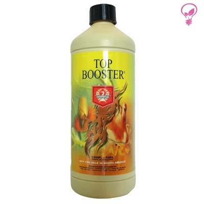 TOP BOOSTER 0.250ml